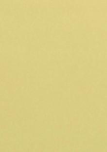 Farbiges Papier A4 120g Chamois 50 Blatt