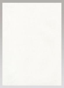 Schreibpapier, weiß, A4, 100g/qm, 250 Blatt, mit Wasserzeichen, FSC