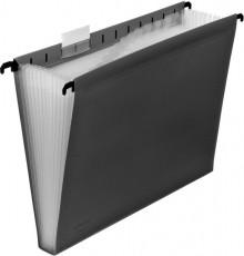 Hänge-Fächertasche 12er dunkelgrau 240 x 318 x 30 mm (HxBxT)