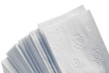 Falthandtuch ECO 25 x 23 cm V-Falz, weiß, 2-lagig,