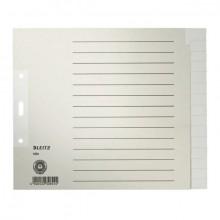 Register Blanko A4 20cm 15Bl grau 100g/qm Tauenpapier RC