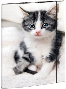 Zeichenmappe A3, Katze, mit Gummizugverschluß, Maße 310 x 440 mm