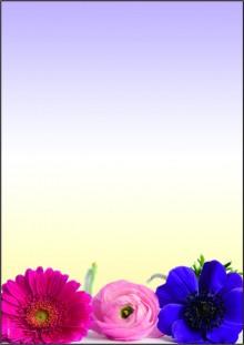 Motiv-Papier Flower Harmony, A4, 90 g, für Ink/Laser/Copy