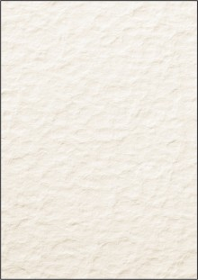 Struktur-Papier A4 200g Motiv: Papyra beidseitig, Edelkarton, für I+L+K