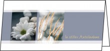 Motiv-Karten inkl. weiße Umschläge. Trauer Karten, Glanzkarton