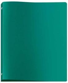 Ringbuch A4 grün, 4Rg 20