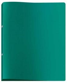 Ringbuch A4 grün, 2Rg 20