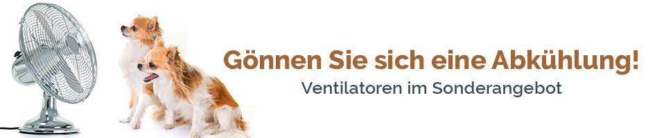 Ventilatoren Banner